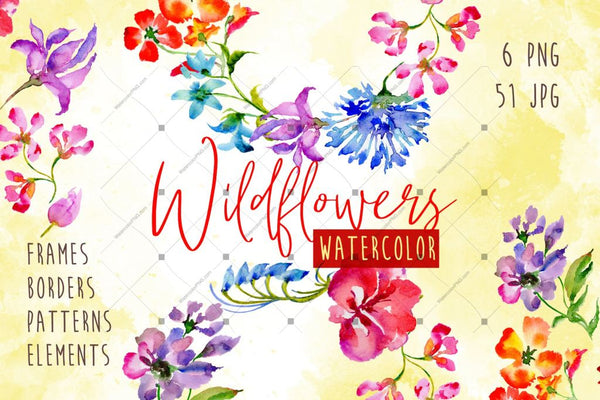 Wildflowers Watercolor Png Set Digital