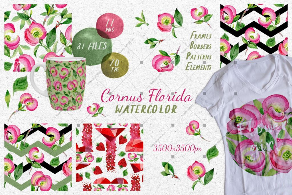 Cornus Florida Flowers Png Watercolor Set Digital