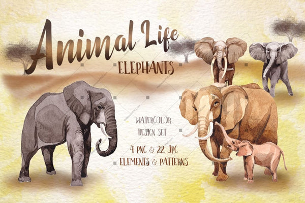 Animal Life փղեր Png Watercolor Set Թվային