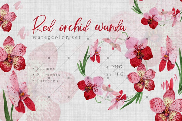 Watercolor Red Orchid Wanda Png Set Digital