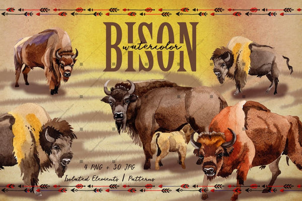 Exotic Bison Wild Animal Png Watercolor Set Digital