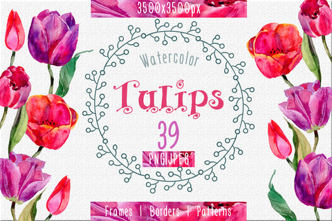 Tulips PNG watercolor flower set