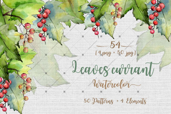Leaves Currant Png Watercolor Set Digital