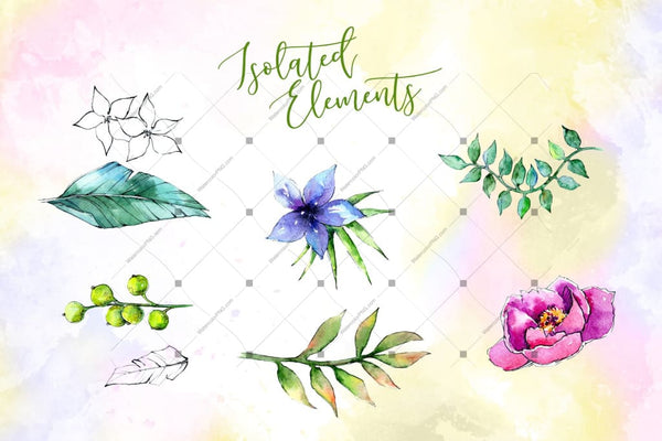 Wonderful Tropical Plant Png Watercolor Set Digital