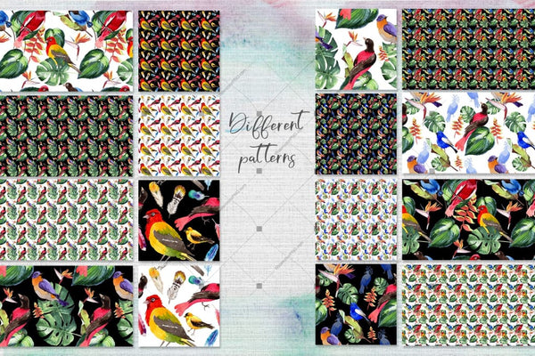 Birds Of Paradise Png Watercolor Set Digital