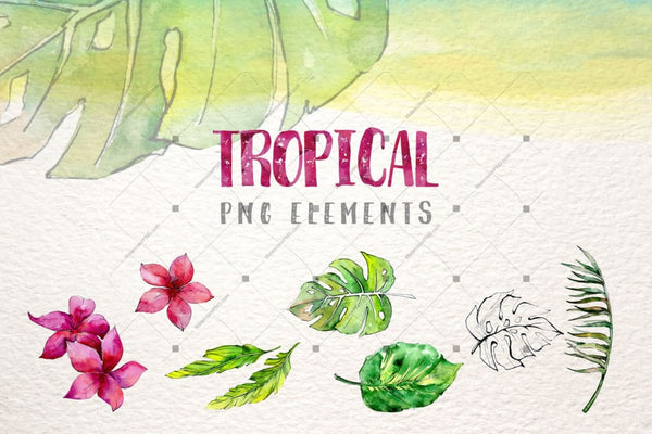 Tropical Leaves Collection Png Watercolor Set Digital