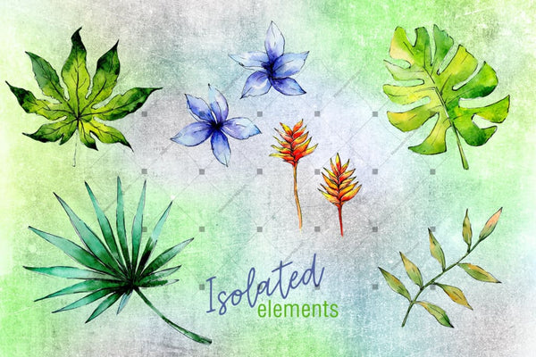 Green Tropical Leaves Png Watercolor Set Digital