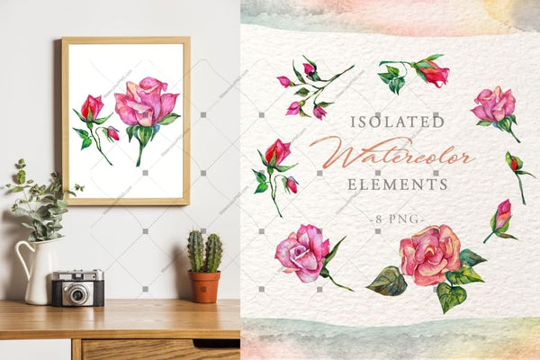 Wonderful Pink Roses Png Watercolor Set Digital