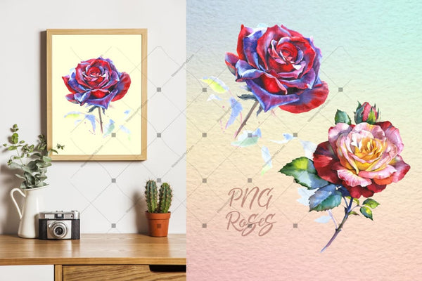 Realistic Watercolor Red Roses Png Set Digital