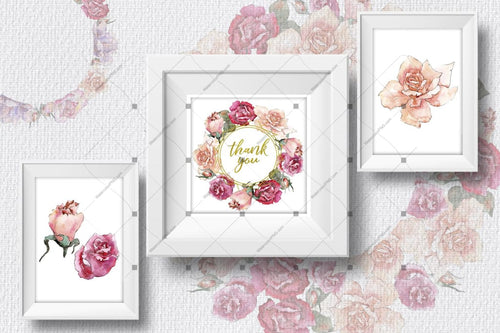 Pink And Beige Roses Png Watercolour Set Digital