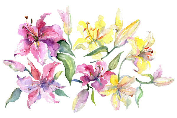 Bouquet with lilies pink and Yellow Watercolor png