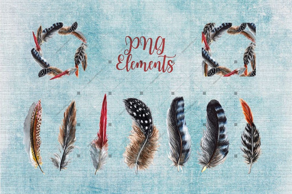 Delightful Feathers Png Watercolor Set Digital