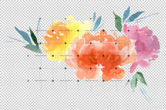 Burung Peony Colorful Peony Watercolor Set Flower