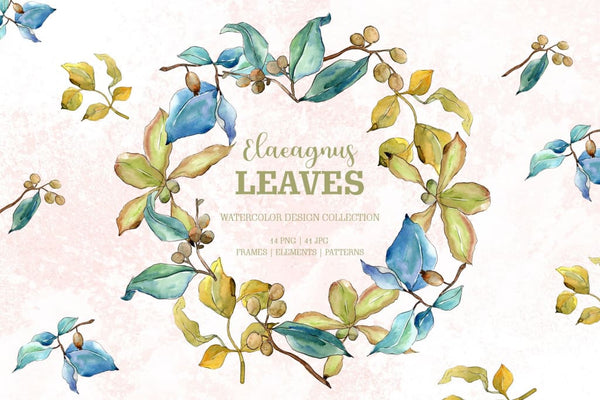 Elaeagnus leaves Watercolor png Digital