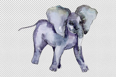 Elephant Watercolor png Flower