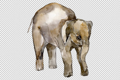 Elephant Watercolor Png Watercolorpng Choose from 10+ watercolor elephant graphic resources and download in the form of png, eps, ai or psd. elephant watercolor png watercolorpng