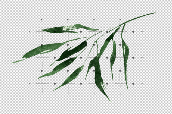 Exotic Bamboo Png Watercolor Set Digital
