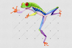 Exotic Frog Red-Eyed Png Set acuarelă Digital