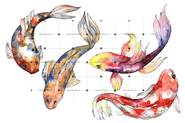 Fairy Goldfish Watercolor Png