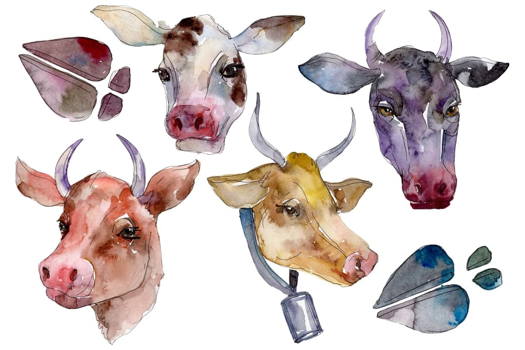 Farm animals: cow head Watercolor png Flower