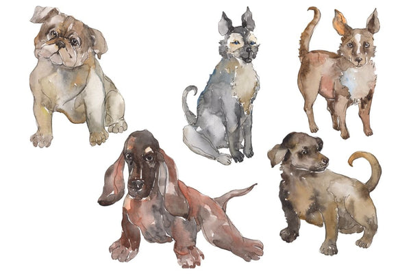 Farm animals: dogs Watercolor png Flower