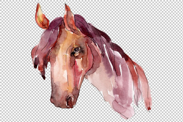 Farm animals: horse head Watercolor png Flower