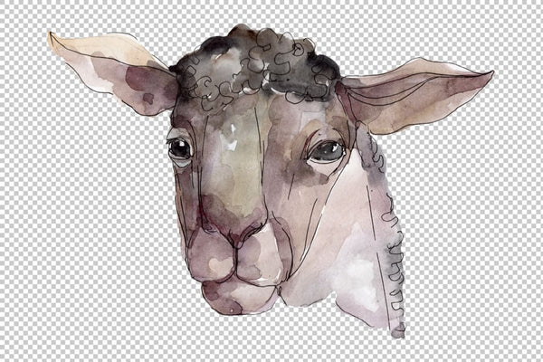 Farm animals: Ram head Watercolor png Flower