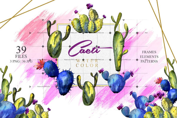 Feel Desert With 39 Cacti Png Clipart Digital