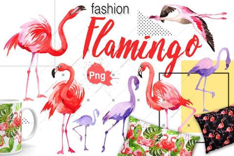 Watercolor Flamingo royalty free images