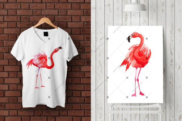 Flamingo Moda Acuarela Png Set Digital