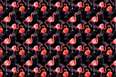 Flamingo modni akvarel png set digitalni