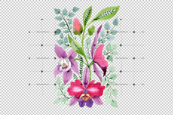 Floral Ornament Of Orchid Flowers Png Set Flower