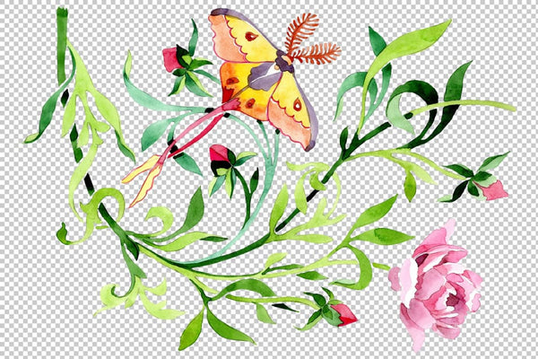 Floral ornament watercolor png Flower