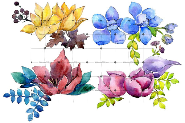 Flower Composition Png Watercolor Set Flower