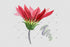 products/flower-red-gazania-png-watercolor-set-background-botanical-colorful-drawing-drawn-watercolorpng_284.jpg