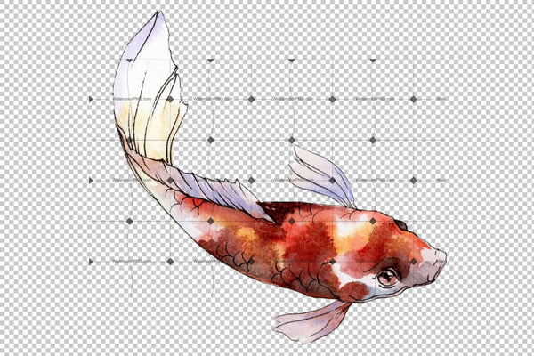 Gold Fish Watercolor Png Flower
