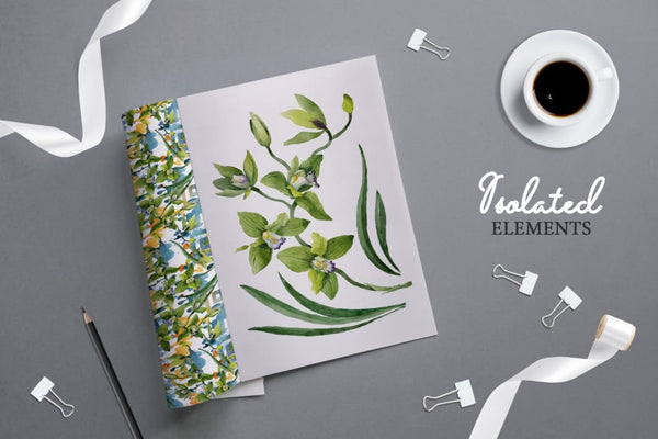 Green Orchid Watercolor png Digital