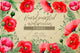 Hand-painted poppies PNG watercolor set