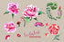 products/holiday-pink-roses-png-watercolor-set-background-botanical-colorful-delicate-drawing-digital-watercolorpng_595.jpg