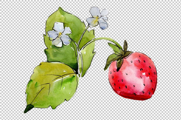 Juicy strawberry watercolor png Flower