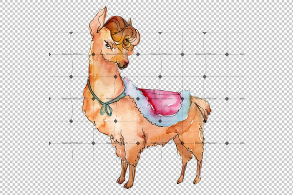 Lama Watercolor Png Flower