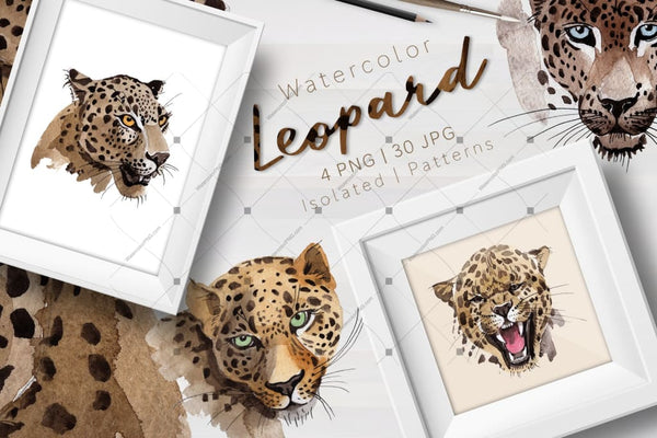 Leopard Png Watercolor Set Digital