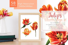Living Coral Watercolor Bundle Produtos 16 en paquete 1