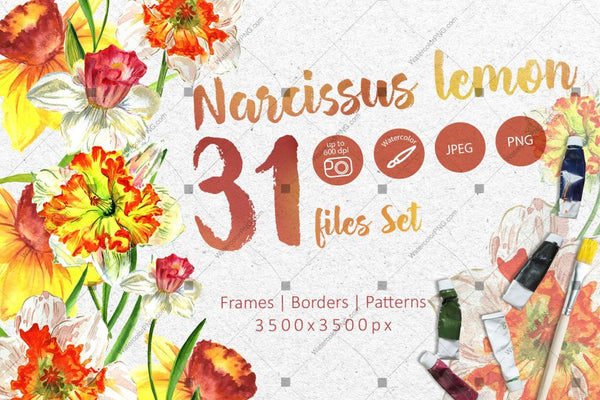 Narcissus Lemon Png Watercolor Flower Set Digital