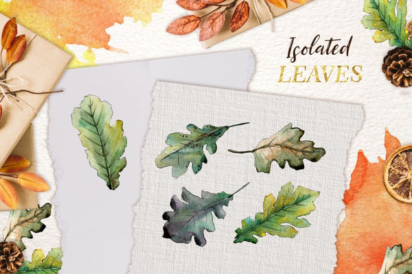 Oak leaves Watercolor png Digital