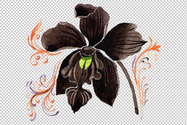 Orchid black Watercolor png Flower