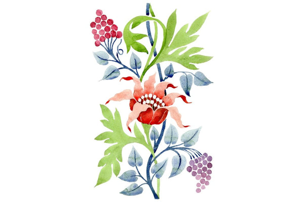 Ornament flower Aromas of nature watercolor png Flower