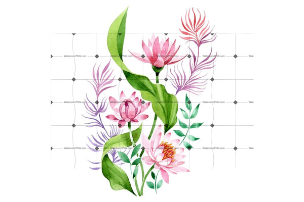 Ornament Of Pink Lotus Png Watercolor Set Flower