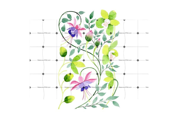 Ornamental Orchid Flower Png Watercolor Set Flower