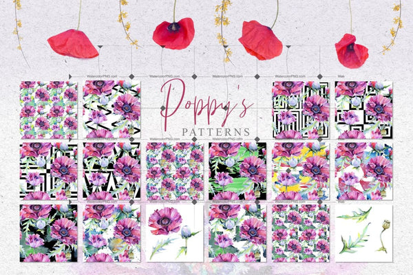 Pink 47 Poppies Clipart Drawings Digital